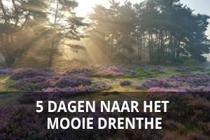 banner_drenthe5dagen